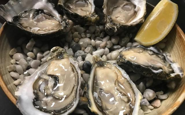 oesters 2019b